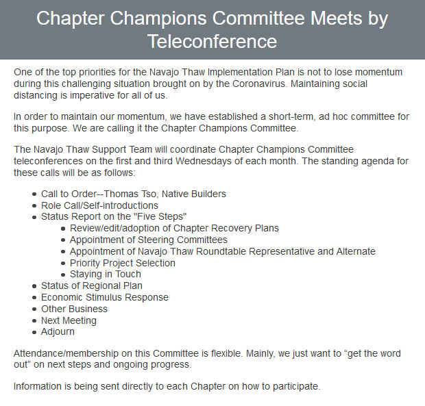 email-blast-chapter-champions-committee-meets-by-teleconference