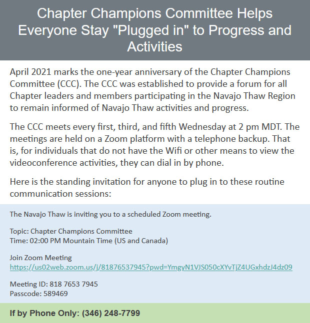 Chapter-Champions-Committee-Helps-Everyone-Stay-Plugged-in-to-Progress-and-Activities